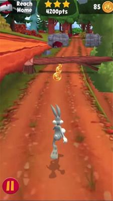 兔宝宝跑酷 APP截图