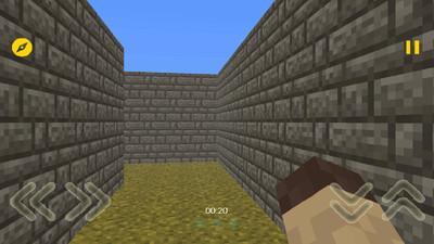 我的迷宫3D APP截图