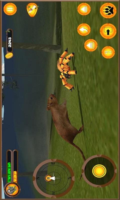 老鼠模拟生存-森林生活 APP截图