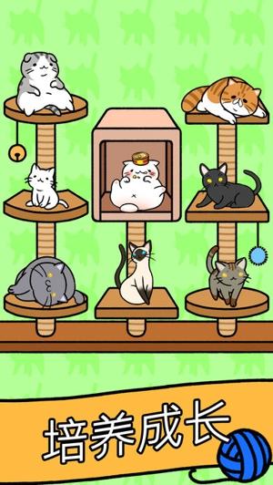 猫咪公寓 APP截图