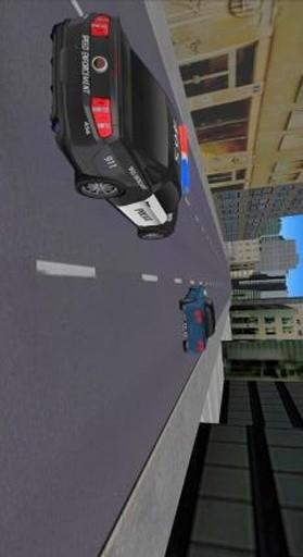 Police Vs Robbers 2 APP截图